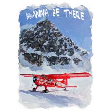 Самолет в горах